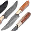 White Deer Damascus Steel Olive Wood Skiner Knife Brace Bolster