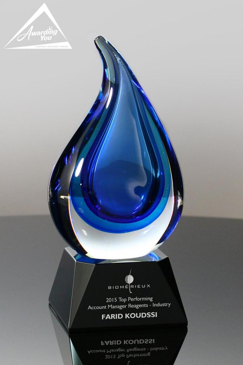 Art Glass Awards such as this Pulse Art Glass Award are an excellent option for IT awards