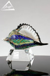 Multicolor Conch Shell Art Glass - color variation B