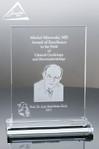 G37. Custom Glass Award
