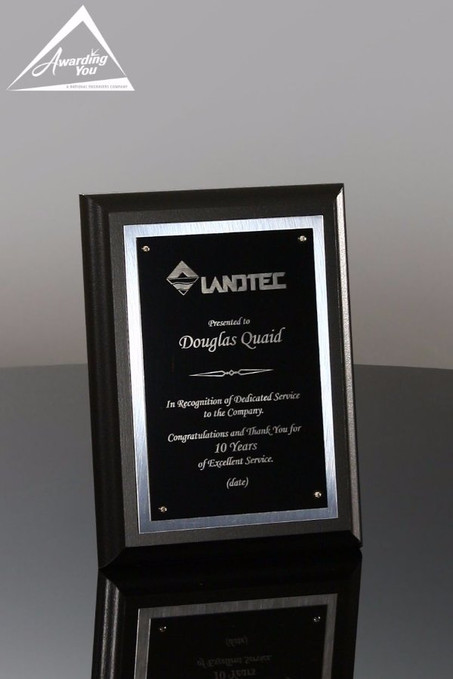 6 x 8 Joplin Economy Corporate Award Plaque