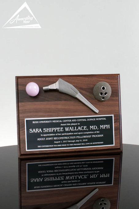 Joint Implant Plaque
