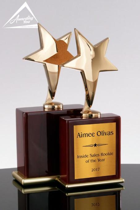 Gold Star Trophy Award
