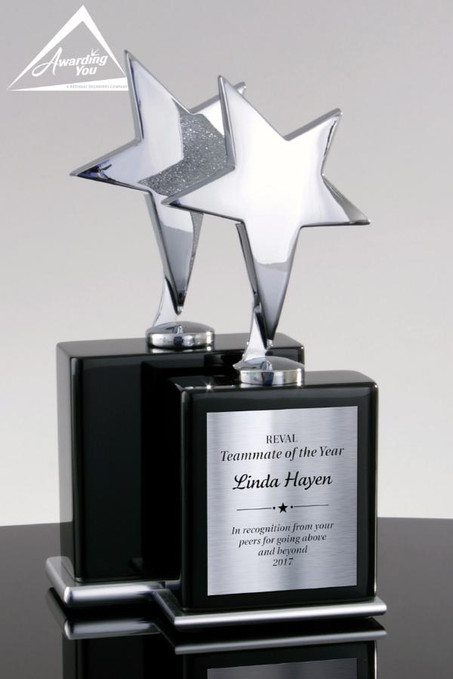 Silver Star Trophy Award - Two Sizes