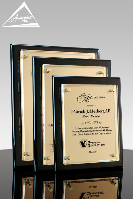 Tesla III Gold plaques with Metal Plate