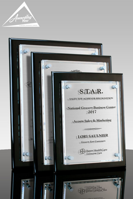 Tesla III Silver Plaques with Metal Plate