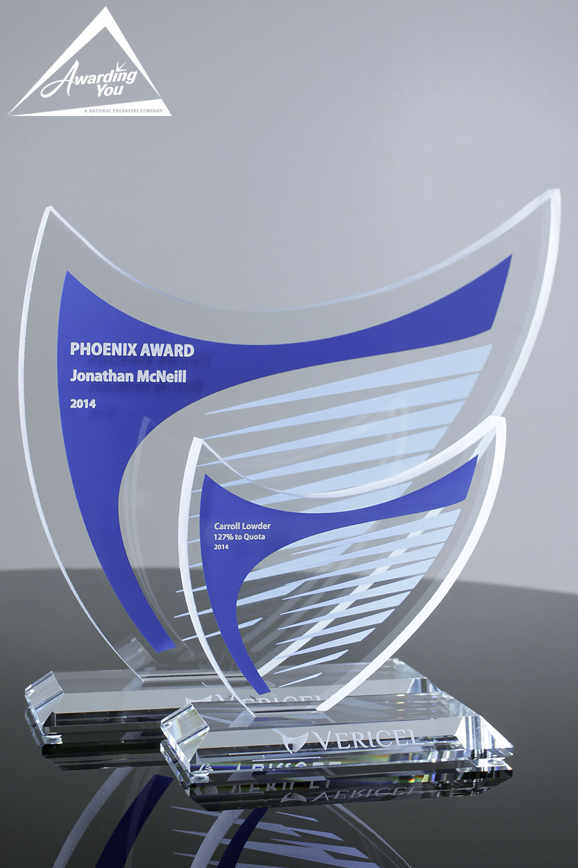 Custom Glass Award by Awarding You