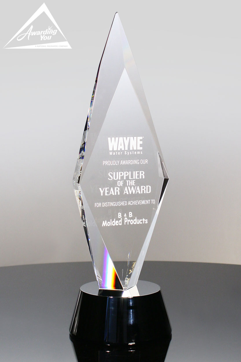 Significant IT Efforts deserve this optic crystal award