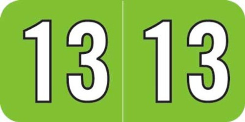 Amerifile Yearband Label (Rolls) 500 - 2013 - Lt. Green/Blk - Laminated