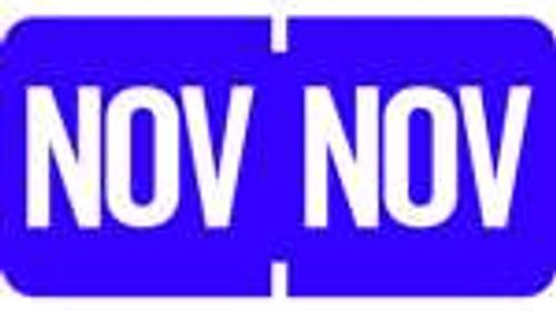 TAB Month Designation Labels (Rolls)- November/Purple