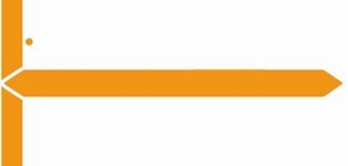 GBS Name Label (Pack of 1000) - Orange - 8852 Series