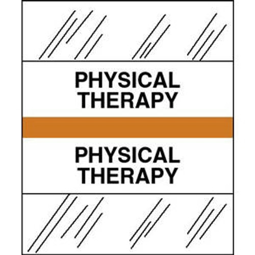 "Tabbies Patient Chart Index Tabs/Labels - ""Physical Therapy"" -  Orange - 1/2"" H x 1-1/4"" W - 100/Pack"