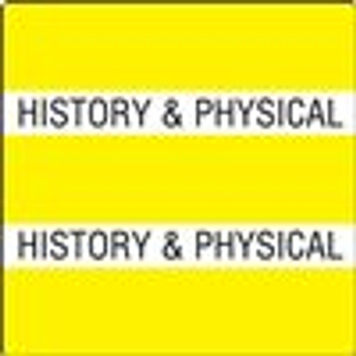 300 Series Create Your Own Patient Chart Divider Tab-History/Physical