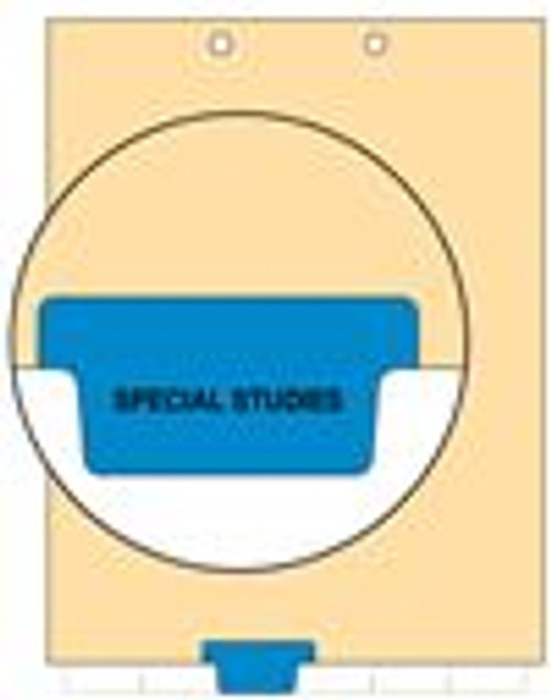 """""""Special Studies"""" - Index Chart Divider-  Bottom Tab in Position 3 - Blue Colored Tab - 100/Package"""