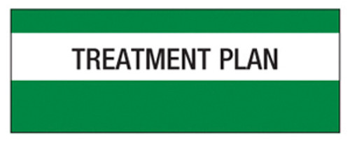 """Treatment Plan"" Large Chart Divider Tabs"
