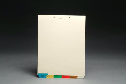 Chart Divider Sets, Medical Pre-Printed Tabs, Bottom Tabs, 1/6th cut - 65 Sets of 6 Tabs