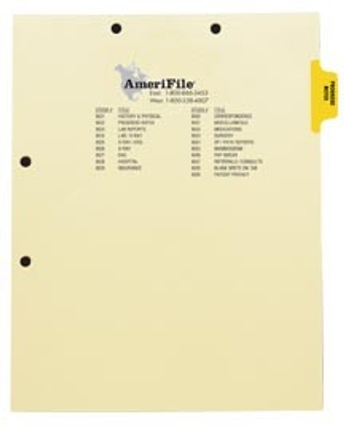 """""""Progress Notes"""" -Index Side Tab Chart Divider- Yellow Tab in Position 2 - Box of 50"""