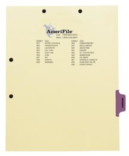 """Insurance"" -Side Tab Index Chart Divider - Purple Tab in Position 6 -  Box of 50"
