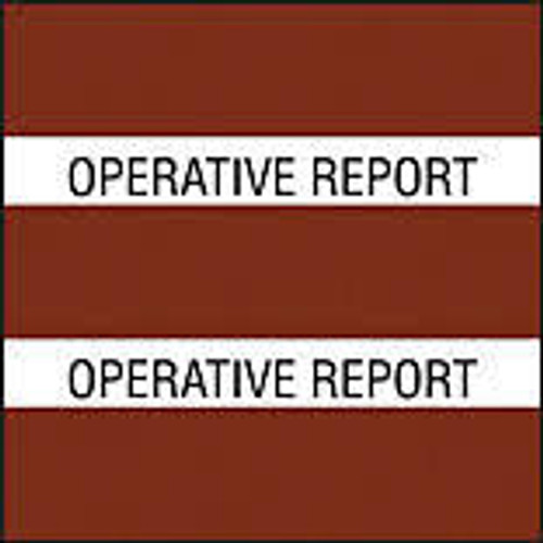 "AmeriFile Chart Divider Tabs - 1 1/2"" X 1 1/2"" - Box of 102 - Brown - Operative & Path Report"
