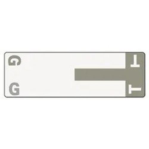 AmeriFile Alpha-Z Compatible Alpha Name Labels - Letter GT - Gray - 3 5/8 W x 1 1/8 H - Package of 100 Labels