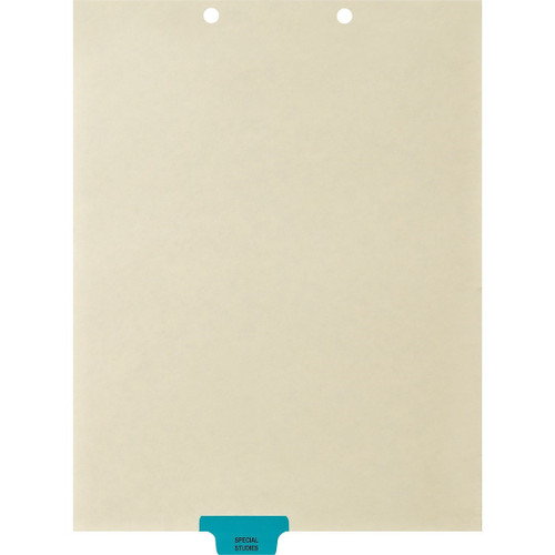 Medical Arts Press Match Colored End Tab Chart Dividers- Special Studies, Tab Position 3- Blue (100/Pkg) (56811)