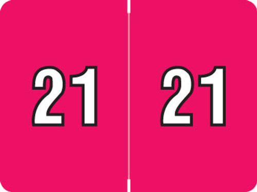 "DataFile Yearband Label (Rolls of 500) - 2021 - Pink - AL8800 Series 15/16"" x 1-1/4""   500/Roll"