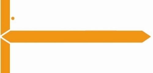 GBS Name Label (Pack of 500) - Orange -8852 Series