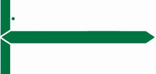 GBS Name Label (Pack of 500) -Green -8852 Series