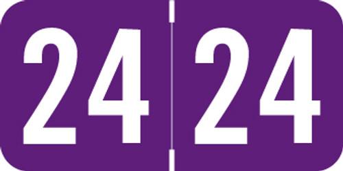 "ACME 2024 Year Label - PURPLE  - 3/4""H x 1-1/2"" W -  ACYM Series - 500/Roll"