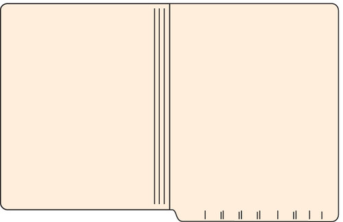"Tabbies 56019 - FILE FOLDERS, 14PT 1-PLY LETTER SIZE FOLDER, MANILA, 9-1/2""H x 12-1/4""W, 500/CASE"