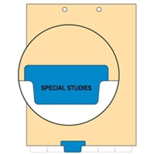 Ivory letter size end tab index divider with position 3 tab printed SPECIAL STUDIES and mylared in medium blue. 125# manila stock. Packaged 100.