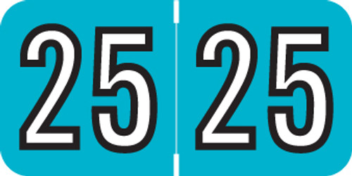 "2025 Year Label - Barkley - 3/4"" x 1-1/2"" - TEAL/Black - Laminated - 500/Roll"