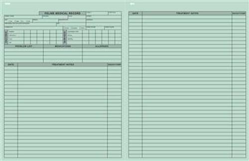 "Feline Medical Records Green 8-1/2""x11"""