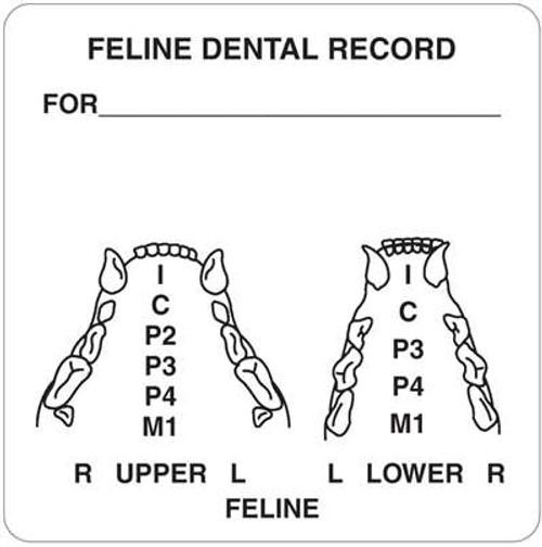 "Feline Dental Record 2-1/2""x 2-1/2"" White"