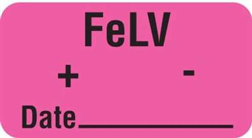 "FeLV + - Date 1-5/8""x7/8"" Fl-Pink"