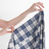 Handwoven Cotton Ikat Gingham - Blue/Ivory | Blackbird Fabrics