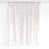 Large Spots Burnout Silk Velvet - Ivory | Blackbird Fabrics