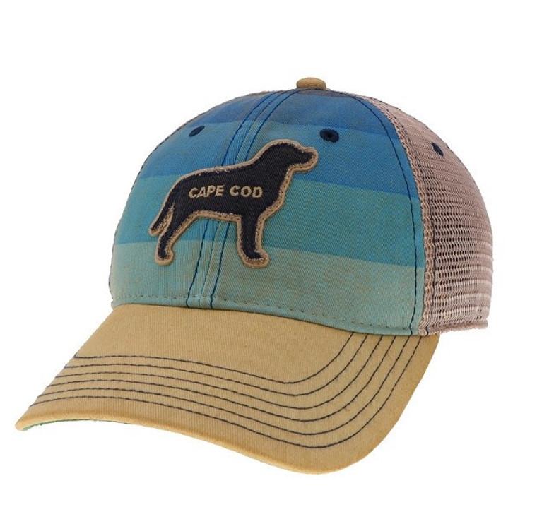 Beach Dog Hat