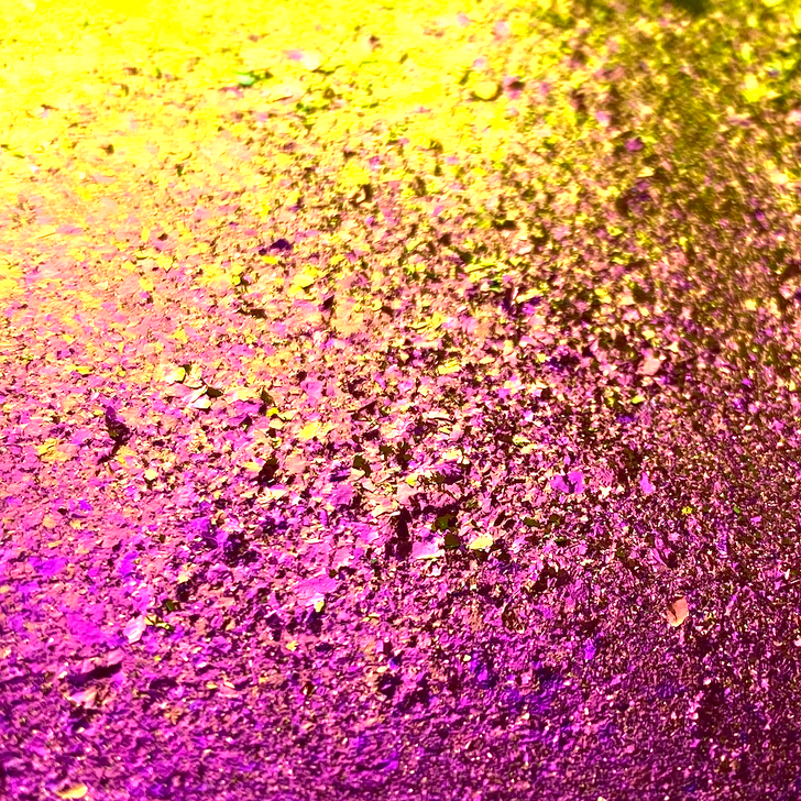 SolarColorDust.com Rainbow Chroma Flakes - Purple Green - Vibrant Color Shifting Flakes for Resin, Nail Art, Tumblers, and More!
