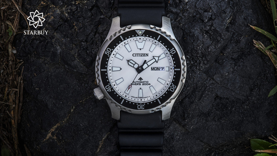 Citizen Promaster Fugu Dive Watches