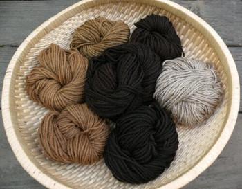 Black Walnut Natural Dye   Extract Powder    Sold By 30g   NDWE030   Bulk Prc Avlb