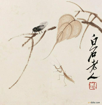 Chinese Half Cooked Rice Paper (Ban Sheng Shou) | for Painting and Calligraphy 69x46cm, Sold by Sheet | XHC4C3K