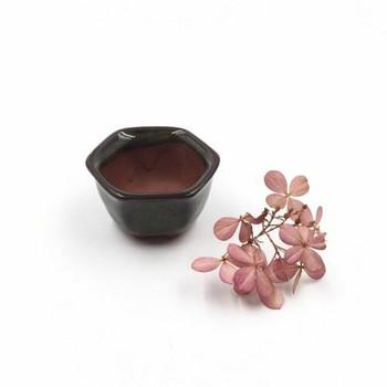 Mini Plant Pot | 4 x 3 cm | Moss | XXZ33