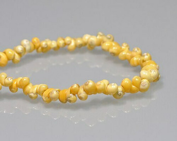 "Snail Shell Yellow Beads 4-5mm | Sold by 16"" Strand