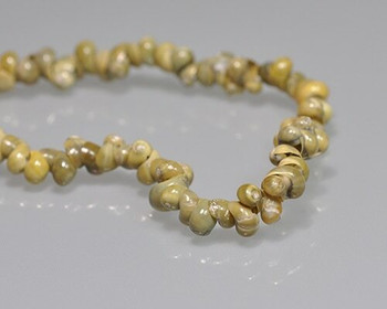 """Snail Shell Yellow-green Beads 4-5mm   Sold by 1 Strand(8"""")   BS0112"""