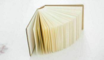 Joytop   Mini Sketchbook Blank Notebook  A7 3.3x8.3cm 250sheets   9415