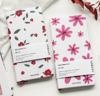 Mr. Paper Graph Notebooks   4 Styles   H20201595-98