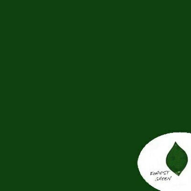 Underglaze Forest Green 100g Cone 06-10 | UFTG2.1