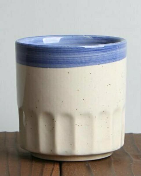 Blue Strip Cup   TDBC1