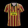 Partick Thistle Home 1994 - 95